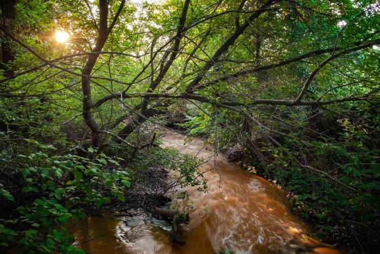 Речка Железная балка в Горловке загрязнена